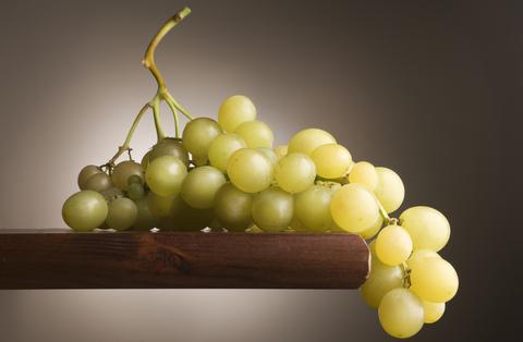 Festa dell'Uva a Monzambano