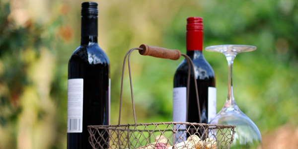 The Wine Fair in Polpenazze del Garda