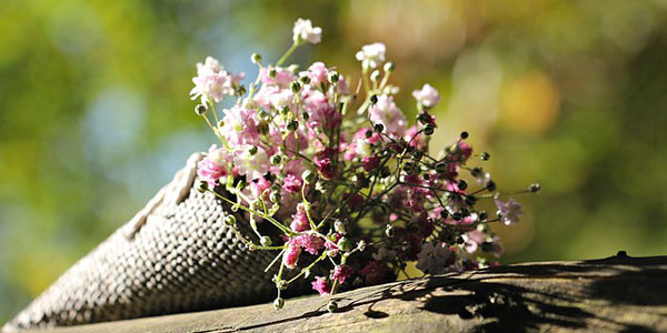 Die Blumen von Castellaro Lagusello 2017