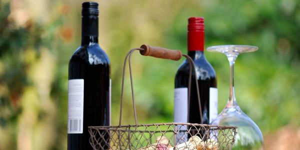 Die Weinmesse in Polpenazze del Garda